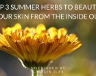top-3-summer-herbs-to-beautify-your-skin-from-the-inside-out