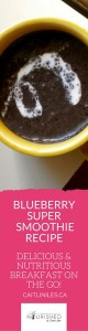 best vegan blueberry smoothie recipe