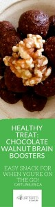 paleo & vegan chocolate walnut brain booster recipe