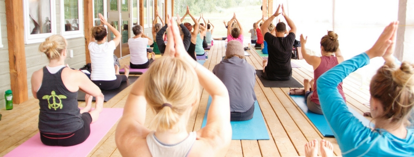 Yoga & Wellness Retreat Gentle Yoga Class in New Brunswick