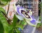 top-3-herbal-remedies-to-manage-stress