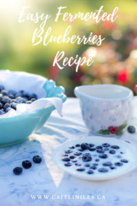 Super Easy Fermented Blueberries Recipe