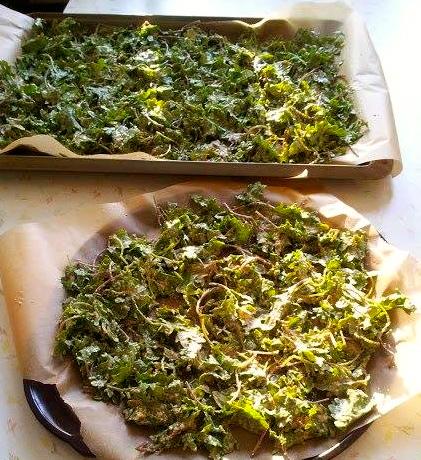 Crunchtastic Kale Chips