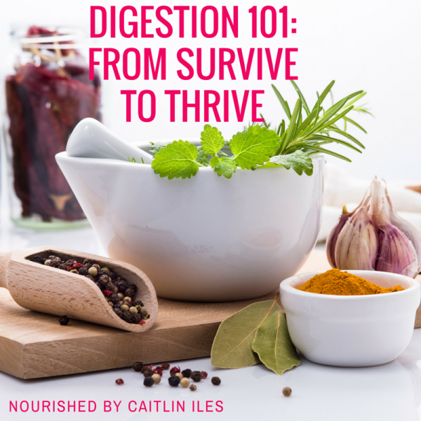 Digestion 101: From Survive to Thrive