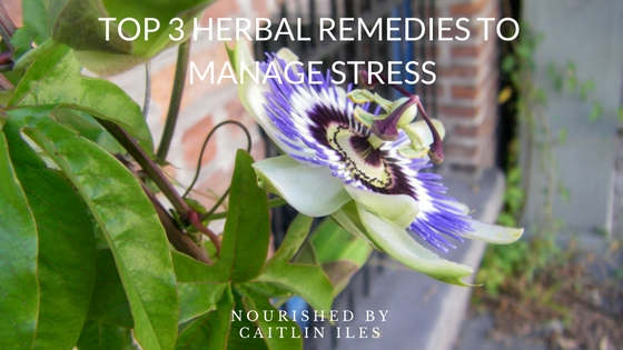 Top 3 Herbal Remedies to Manage Stress