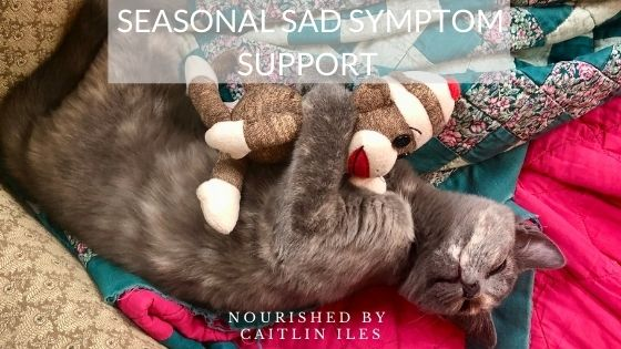 Seasonal SAD Symptom Support
